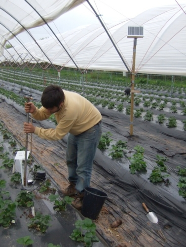 waterbee-progetto-irrigazione-sostenibile.jpg