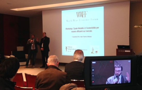 wwef-sostenibilita-vino-forum-merano-7-11-2014-by-agn-cs.jpg