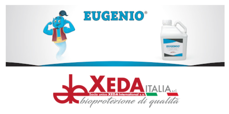 xeda-eugenio-apertura-2020