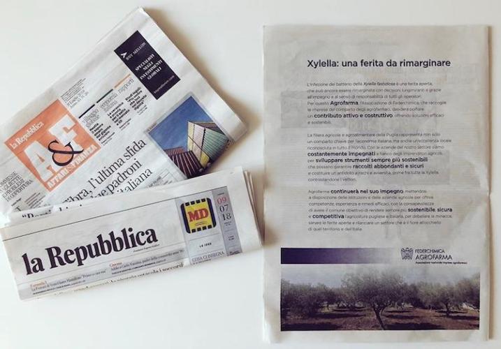 xylella-ferita-da-rimarginare-repubblica-fonte-affari-e-finanza.jpg