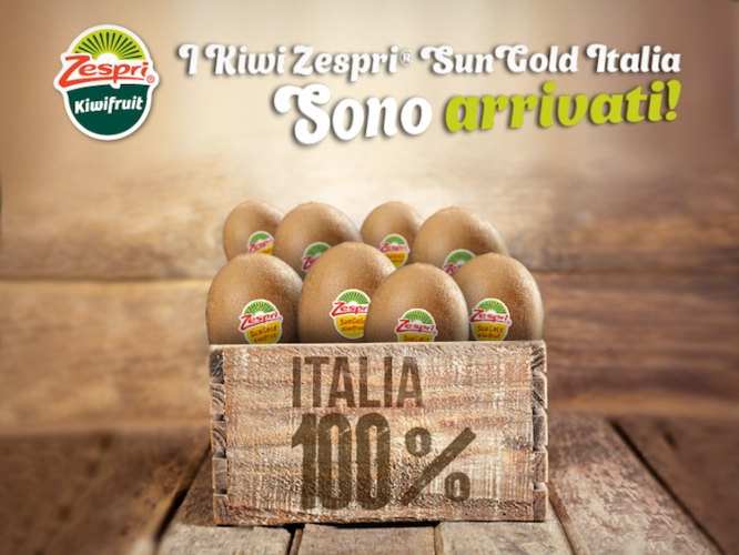 zespri-sungold-italia