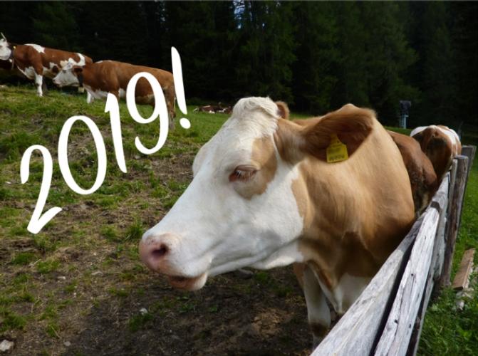 zootecnia-2019-ag