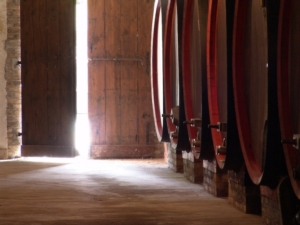 20171111-cantine-aperte-san-martino-fonte-movimento-turismo-vino
