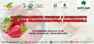 Aggiornamento tecnico e normativo per una fragolicoltura sostenibile - Plantgest news sulle varietà di piante