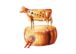 20180303-asta-bovine-da-latte