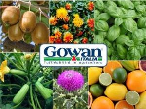 20180517-gowan-cover-autorizzazioni-eccezionali