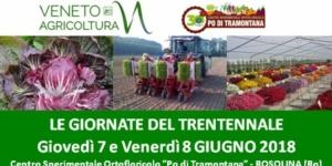 20180607-giornate-del-trentennale-ortofloricoltura-fonte-veneto-agricoltura