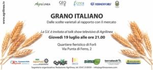 20180719-grano-italiano-agrilinea