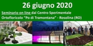 EVENTO ONLINE - Giornata aperta orticola, edizione 2020 in versione smart - Plantgest news sulle varietà di piante