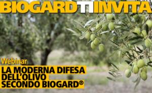 EVENTO ONLINE - La moderna difesa dell'olivo secondo BIOGARD<sup>®</sup>