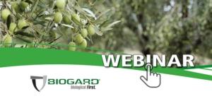 La moderna difesa dell'olivo secondo BIOGARD<sup>®</sup>