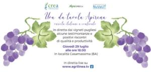 20210729-evento-uva-da-tavola-apirena-fonte-agrilinea