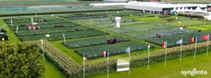 20210928-1001-fields-of-innovation-fonte-syngenta