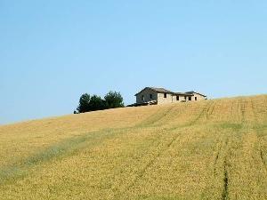 Azienda-agricola2