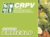 CRPV-settore-orticolo