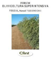 Olivicoltura-superintensiva-2011