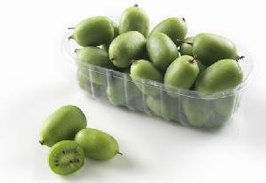 Sant-orsola-kiwi-arguta-baby-confezione