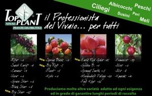 Top Plant Vivai: nuove varietà in campo - Plantgest news sulle varietà di piante