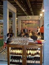 Vitis-rauscedo-viticoltura-enovitis-2007