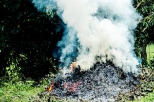 abbruciamenti-bruciare-residui-vegetali-by-anattatan-adobe-stock-749x500