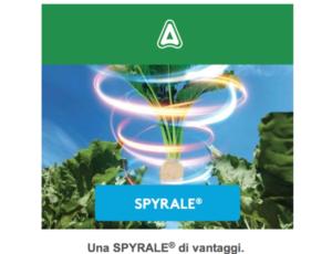 adama-spyrale-2018