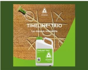 Timeline<sup>®</sup> Trio: un passaggio, un successo