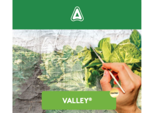 adama-valley