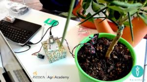 agriacademy-ruralhack-fonte-ismea