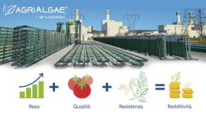 agrialgae-algaenergy-alghe-fonte-algaenergy