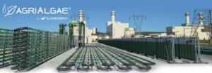 agrialgae-fonte-algaenergy