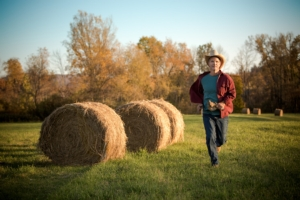 agricoltore-che-corre-by-christine-adobe-stock-750x500