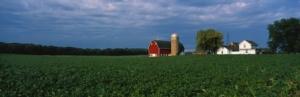agricoltura-americana-fattoria-silos-fienile-campo-by-spiritofamerica-fotolia-750