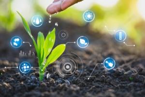 agricoltura-digitale-pianta-dati-tecnologie-worawut-adobe-stock-750x500