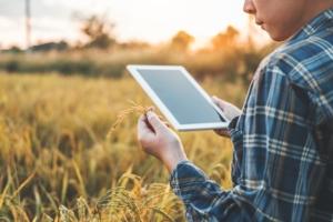 agricoltura-digitale-precisione-giovani-tablet-tecnologie-internet-riso-by-joyfotoliakid-adobestock-750x500