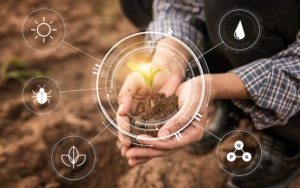 agricoltura-digitale-smart-farming-iot-agricoltura-precisione-by-pugun-photo-studio-adobe-stock-750x469