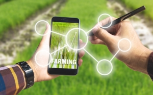 agricoltura-digitale-smartphone-internet-by-theerapong-fotolia-750