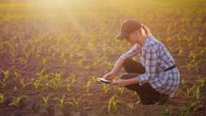 agricoltura-digitale-tablet-campo-donna-by-stockmediaproduction-fotolia-750