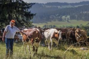 agricoltura-svizzera-750x500-confederazione-svizzera