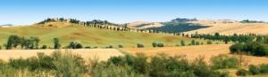agricoltura-toscana-siena-by-lamax-fotolia-750