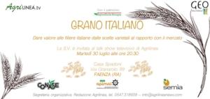 agrilinea-20190730-grano-italiano-faenza