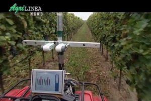 agrilinea-news-video-interviste-certificazione-magis-nov-2013