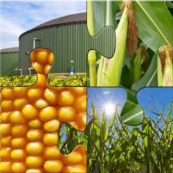 agroenergie-bioenergie-fonti-rinnovabili-biogas-by-jurgen-falchle-fotolia-1000x1000
