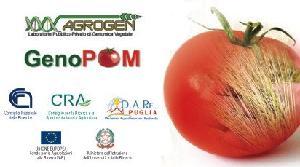 agrogen-genopom-genomica-vegetale-dare-puglia