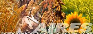 aires-raccoglitori-essicatori-stoccatori-cereali-semi-oleosi-logo