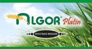Algor Platin: doppia difesa su frumento e orzo con il diserbo in pre-emergenza o post precoce
