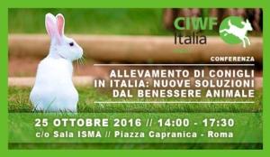 allevamento-conigli-benessere-animale-20161025-ciwf
