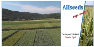 Allseeds e le varietà di cereali a paglia - Plantgest news sulle varietà di piante