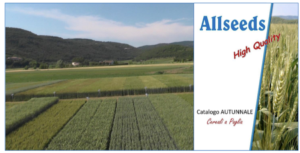 allseeds-quality-cereali-paglia-fonte-allseeds