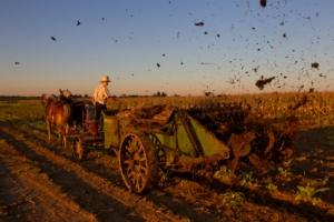 amish-farmer-autore-peter-essick-concorso-fotografico-syngenta-photography-award