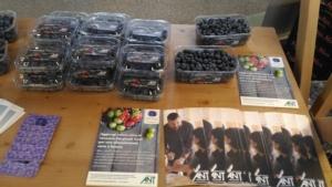 ant-piccoli-frutti-fonte-ncx-20180723